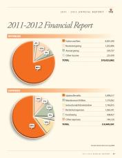 TMI Annual Report 17