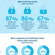 060-ARGO-ARGOPRO-7390-What-you-need-to-know-About-Cyber-Insurance-Infographic-600-px_v3